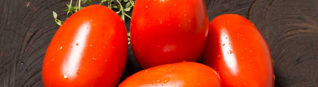 Qual o melhor tomate para fazer molho caseiro?